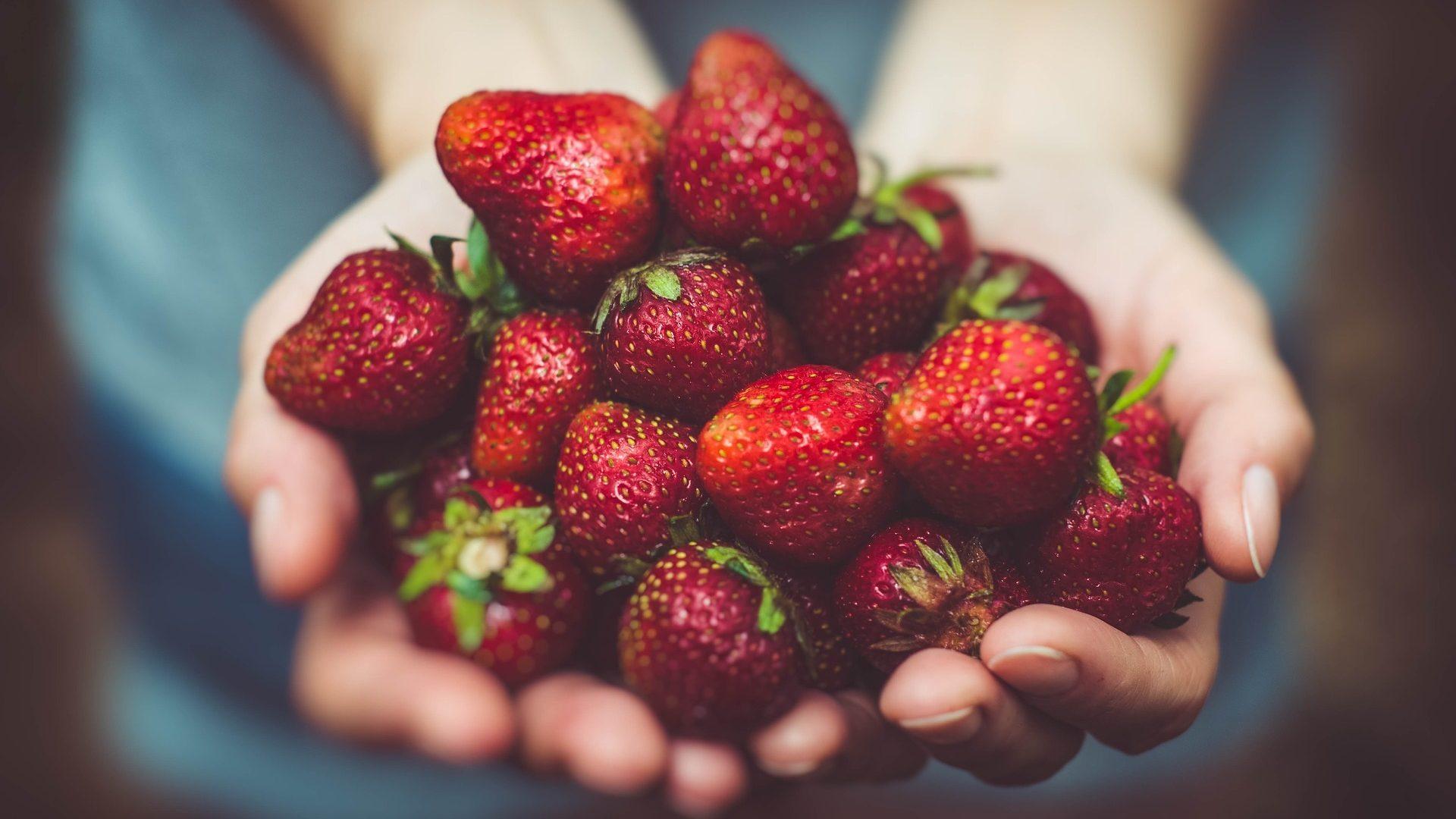 strawberries-1835934_1920